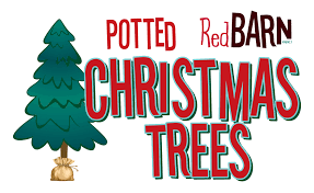 Christmas At The Market - Red Barn Market Red Barn Market Matticks Farm Cordova Bay 250 658 Victorias Secret Gems Heneedsfoodcom For Food Travel In Lowell Mi Fresh Produce Ice Cream Food Fall Fun Connecticut This Mom The Big Townie Life Flyers Pflugerville Chamber Of Commerce Flyer December 8 To 14 Canada Sneak Peek Inside The New Esquimalt Opening Oak Photos