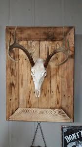 best 25 antler mount ideas on pinterest deer mounts deer mount