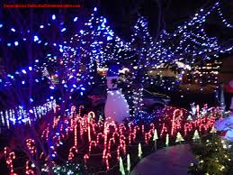 Clovis Christmas Tree Lane Hours by Best Christmas Lights And Holiday Displays In Union City Alameda