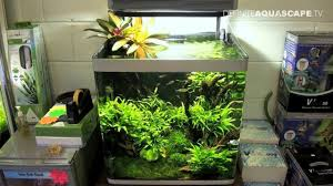 Aquascaping - Aquarium Ideas From Aquatics Live 2011, Part 2 - YouTube 329 Best Aquascape Images On Pinterest Aquarium Ideas Floratic Visiting Paradise At Shah Alam Planted Aquarium Aquascape Things Aquariums Aquascaping Malaysia Diy Pertama Kali Aquascaping October 2010 Of The Month Ikebana Aquascaping World Sumida Aquarium Reloaded Fish Tanks And Designs Awesome A Moss Experiment Its All About Current Low Tech Tank Cuisine Wonderful Small Cubical Styles Planted The Surreal Submarine Amuse