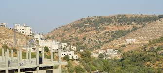 100 Artas Architects Welcome To Palestine
