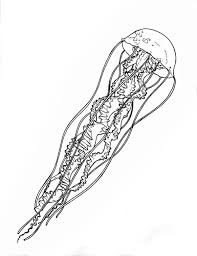 Jellyfish Very Log Spiral Tentacle Coloring Page