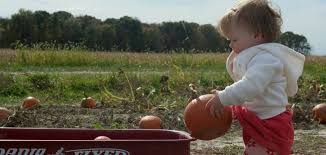 Best Pumpkin Patch Indianapolis by Indy With Kids