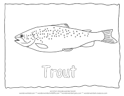 Common Trout Picture To Color 3 Brown Coloring Page With Outline Pictures