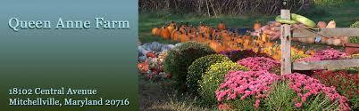 Pumpkin Patch Prince Frederick Md by Queen Anne Farm U0026 Pumpkin Patch Fresh Fruits U0026 Vegetables In