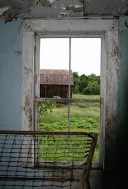 A photo of the metal shed