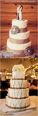Wedding Cake Cakes Rustic Lovely Cupcakes To In Ideas