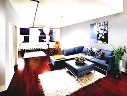 Living Room Cute Apartment Ating Ideas World Luxury Decorating Decor