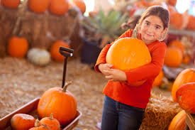 Faulkner Pumpkin Patch by Kc Pumpkin Patch Guide Your Kansas City Home Experts