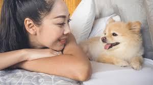 frau entspannen sich mit hund im schlafzimmer stockbild