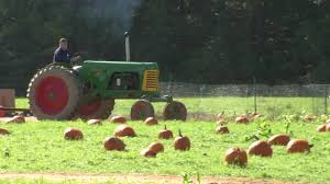 Pumpkin Patch Nj Monmouth County by Picking Pumpkins And Apples At Von Thun Farms Youtube
