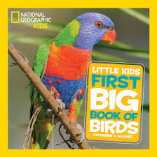 National Geographic Little Kids First Big Book Of Birds ... National Geographic Backyard Guide To The Birds Of North America Field Manakins Photo Gallery Pictures More From Insects And Spiders Twoinone Bird Feeder Store Birds Society Michigan Mel Baughman Blue Jay Picture Desktop Wallpaper Free Wallpapers Pocket The Backyard Naturalist 2017 Cave Wall Calendar