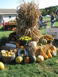 Apple And Pumpkin Picking Maryland by Best 25 Pumpkin Farm Ideas On Pinterest Harvest Games Pumpkin