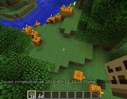 Pumpkin Pie Farm Minecraft by Largest Pumpkin Patch Contest Seeds Minecraft Java Edition