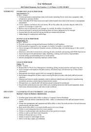 Lead Supervisor Resume Samples | Velvet Jobs Production Supervisor Resume Sample Rumes Livecareer Samples Collection Database Sales And Templates Visualcv It Souvirsenfancexyz 12 General Transcription Business Letter Complete Writing Guide 20 Data Entry Pdf Format E Top 8 Store Supervisor Resume Samples Free Summary Examples Account Warehouse Luxury 2012