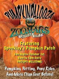 Pumpkin Patch With Petting Zoo Inland Empire by Petting Zoo Archives Project Refined Life