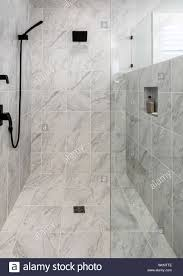 100 Marble Walls Luxury Wheelchair Accessible Shower With Marble Floor And