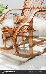 Cute Red Cat Licking Muzzle Lying Rocking Chair — Stock ...