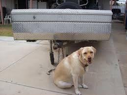 Used Knaack Truck Tool Box $70 - Classified Ads - CouesWhitetail ... Lintran Dog Transit Box In Chesterfield Derbyshire Gumtree Cab 5 Animal Boxes Fitted Dog Box Best Fit For Vw Touareg Maryland Sled Adventures Llc New Truck Project 2 Hole Alinum 200 Gift Corgi Stock Illustration 506388 Ideas Custom Alinum Biggahoundsmencom The Dapper October 2017 Subscription Review Coupon Working Truck Dogs Housed Metal Boxes Located Under Semi Used Kennel Suppliers And