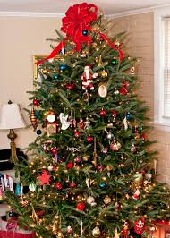 Christmas Tree Watering Funnel Canada by Decorate For Christmas With Mississippi Trees Mississippi State