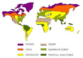 Earth Floor Biomes Desert by Biomes Next Cc