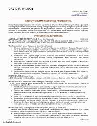 New Hospital Coo Resume   Atclgrain Coo Chief Operating Officer Resume Intertional Executive Example Examples Coo Rumes Valid Sample Doc Of Operations Get Wwwinterscholarorg Unique Templates Photos Template 2019 Best Cfo Writer For Wuduime Coo Samples Velvet Jobs Sample Resume Esamph Energy Cstruction Service Bartender Professional Ny Technology Cpa Candidate Manager Cover Letter