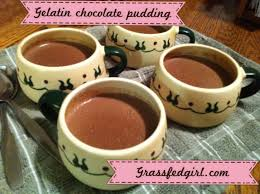 Paleo Pumpkin Custard With Gelatin by Nourishing Dark Chocolate Gelatin Pudding Paleo Foods To Try