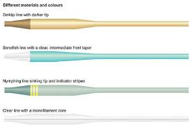 fly line anatomy global flyfisher my fly line doesn t