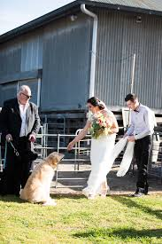 Ashleigh & Liam | Barn Wedding | Lauren Alyce Photography Dog Carriers Cages Travel Crates Bpacks Petstock Chain Pet Stores Melbourne Dog Dictionary Shop Warehouse Buy Supplies Online Petbarn Reptile Heating Lighting Puffydoggz Rescue Home Facebook The Bellarine Peninsula Wedding Venues Ivory Tribe Waurn Ponds Gym Snap Fitness 247 Blog Posts Mornington Yacht Club Official Site Best Friends Supercentre Big Foods