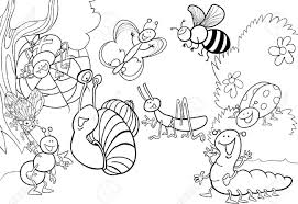 Insect Coloring Page Insects Sheets Tryonshorts Images