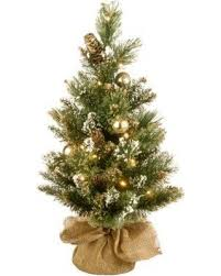 The Holiday Aisle Golden Bristle 24 Green Artificial Christmas Tree With Battery Operated LED Lights