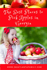 Pumpkin Farms In South Georgia by 10 Best Places For Apple Picking In Ga W Map Apple Festivals