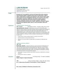 Profile Examples For Resumes Business Example Doc Resume Section Dating Writing Samples Personal Summary