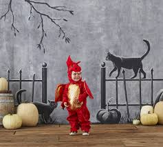 Top Picks For Halloween Costumes 2018 The 25 Best Pottery Barn Discount Ideas On Pinterest Register Best Kids Shark Costume Cool Face Diy Snoopy Costume Barn Toddler Bear Baby Lion Halloween Puppy Style Mr And Mrs Powell Mandy Odle Nursery Clothing Shoes Accsories Costumes Reactment Theater Unique Dino Dinosaur Mat Busy Philipps Joanna Garcia Swisher Celebrate Monique Lhuillier