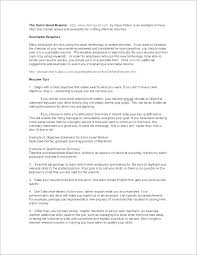 Lawyer Resume Executive Summary Example Slide Beautiful Define Plan