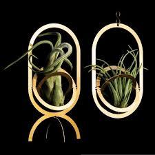 fundamental berlin luftpflanzenhalter tillandsien halter air pendant air trophy aus messing