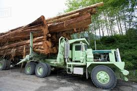 A Logging Truck Stacked With Cedar Logs Sits Near Cougar Annie's ... 1988 Kenworth T800 Logging Truck For Sale 541706 Miles Spokane Truck Wikipedia Loses Load Near Mayook The Drive Fm 849 Pre Load Ta Off Highway Log Trailer Stacked Wooden Logs Tree Trunks On A Logging In Ktaia Stock This Electric Driverless Can Carry Up To 16 Tons Of Wel Built Trucks And Trailers Trinder Eeering Big Moving Wood From Harvest Field Plant Timber Simulator Apk Download Free Simulation Game Photo By Jeremy Rempel Highways Today Code 3 Tekno Scania 4 Rigid With Drag Wsitekno Etc Police Report Fding Marijuana That Spilled