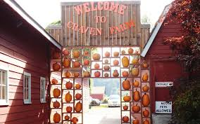 Pumpkin Patch Petting Zoo Illinois by America U0027s Best Pumpkin Farms Travel Leisure