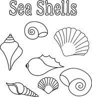 seashells poster black white outline clipart Size 88 Kb