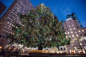 Nyc Christmas Tree Disposal by Location Of Christmas Trees Christmas Lights Decoration
