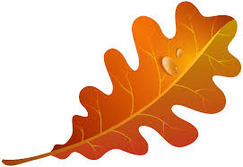 Fall Orange Leaf Clipart Image Transparent Free Download