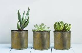 Metal Zinc Planters Are Amazing Pieces For Rustic Desert Or Country Style Decor Looking Inspiration On Garden Pots