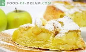 mit äpfeln im ofen 6 beste rezepte wie