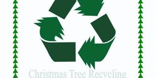 Christmas Tree Disposal Nyc 2015 by Recycle Those Christmas Trees
