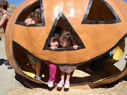 Santa Clarita Pumpkin Patch Festival by Pumpkin Patches Kids Will Love Near Valencia Ca Trekaroo
