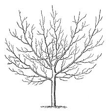 Vintage Clip Art – Winter Trees