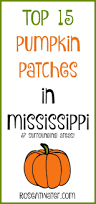 Ms Heathers Pumpkin Patch Louisiana by Top 15 Pumpkin Patches Of Mississippi And Surrounding Areas