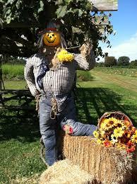 Free Pumpkin Patch In Fredericksburg Va by Sneads Farm 13 Reviews Fruits U0026 Veggies 18294 Tidewater Trl