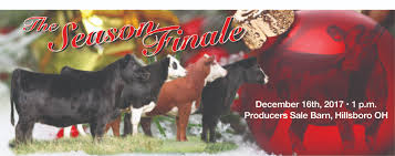 The Pulse | Powered By Sullivan Supply | Page 3 1021cattle6ajpg Purple Reign Cattle Company Online Sale The Pulse February 2017 Texas Longhorn Trails Magazine By A Good Place To Be Cow At Fort Worth Stock Show Animals Are Commercial And Registered Ozarks Farm Neighbor Newspaper Cattlemen Opmistic About Resumed Beef Exports To China News Blog Lautner Farms Experience The Value Best Of Southwest Shootout Overall Market Burke Hidin In Sand Steer November 2015 Graham Livestock Auction Sanctioned Shows Ijbba Iowa Junior Beef Breeds Association