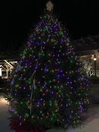 Christmas Tree Cutting Permits Colorado Springs by Mayor U0027s Tree Lighting Ceremony City Of Lake Saint Louis